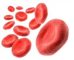 Low Hemoglobin-crop