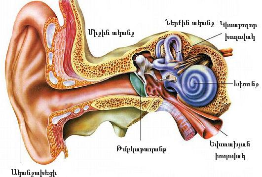 Ի՞նչ է ականջի բորբոքումը